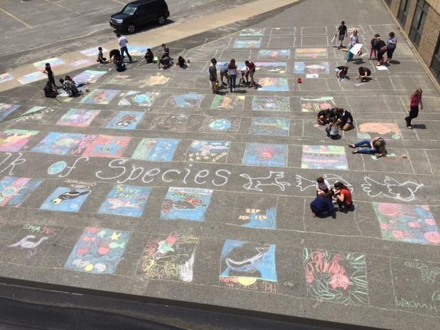 Sidewalk of Species - students drawing images of endangered species